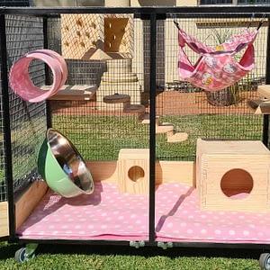 L Custom Built Chinchilla Cages