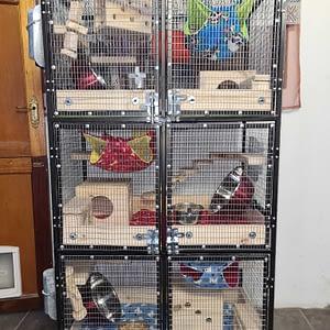 XXL Custom Built Chinchilla Cages