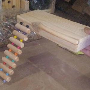 Ladder Ledge