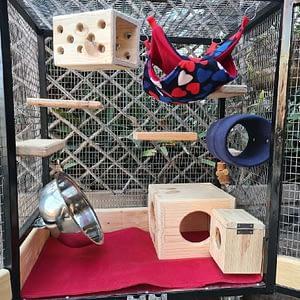 Medium Chinchilla Cage